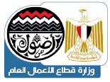 وزارة قطاع الاعمال العام